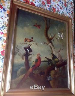 Ancienne et Grand peinture, huile sur toile, les oiseaux. Cabinet de curiosités