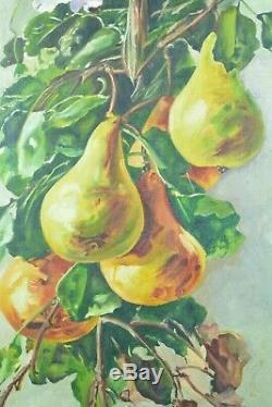 Grand tableau ancien Nature morte aux poires Fruits Orientaliste Constantine