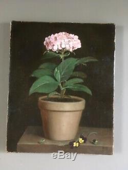 Huile sur toile pot dhortensia signée A. D