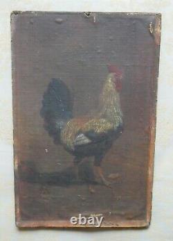 Peinture animalière ancienne, huile sur toile, coq, XIXème siècle