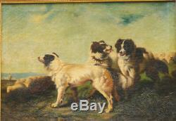 Tableau 19ème sur toile chiens border collie troupeau moutons