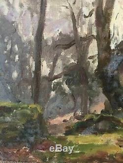 Tableau Impressionnisme Paysage de Sous bois Peinture de Jules C. Cavé 1859-1949